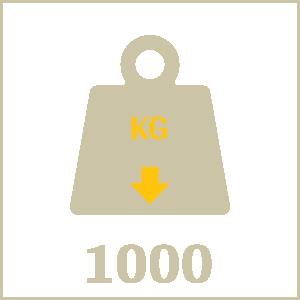 تحمل وزن 1000 کیلوگرم بر متر